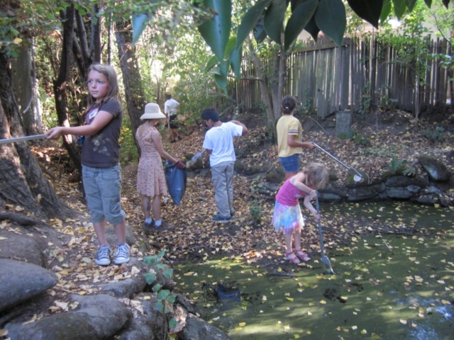 cleaning Poppy creek in our neighborhood