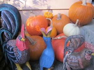 pumpkins from the children's garden:jardin de los ninos